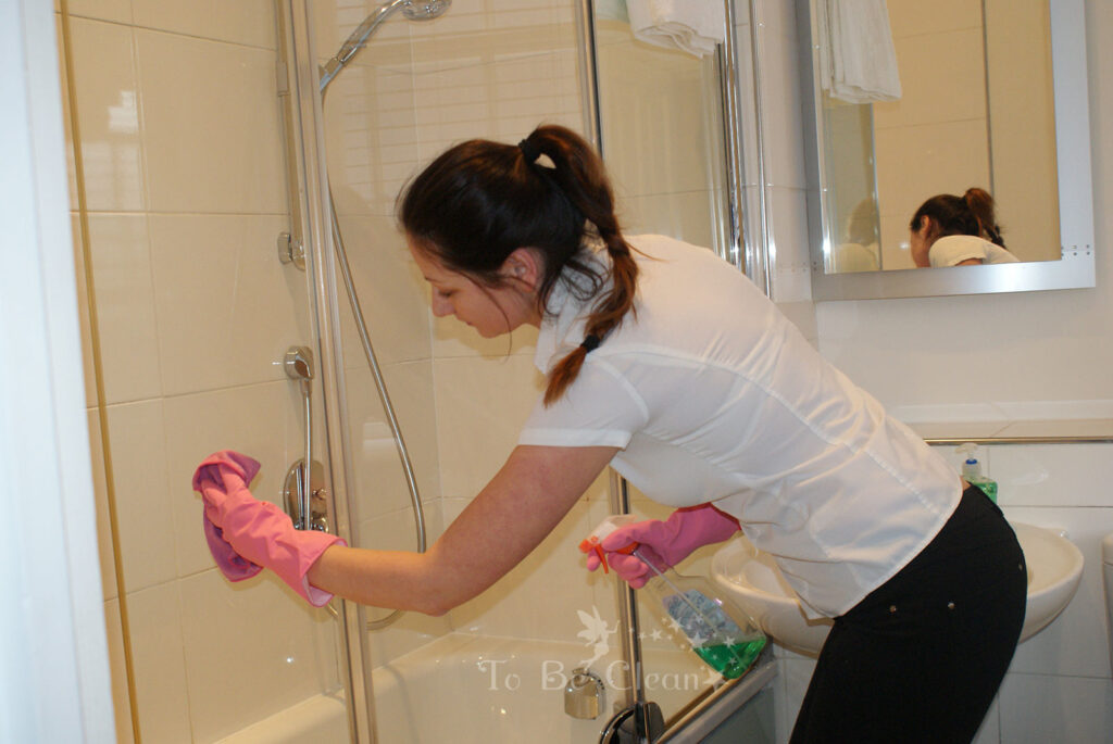 Professional-Cleaning-Services-London